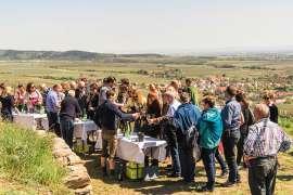 Zahlreiche Leute Verkosten im Freien Wein bei der ÖTW Erste Lagen Tour de Vin