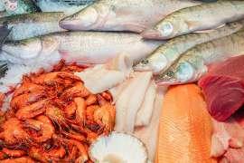Laut der traditionellen chinesischen Medizin gehören Fische und Meeresfrüchte, hier im Bild, zu jenen Speisen mit wärmender thermischer Wirkung.