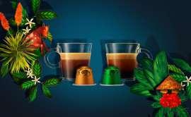 Sujet 'Nespresso Birth Places mit je einer Tasse und einer Kapsel der beiden neuen Limites Edition Sorten