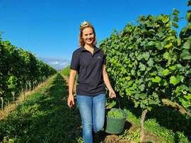 Eröffnung der Federweißer-Lese im rheinhessischen Lörzweiler mit der amtierenden Rheinhessischen Weinkönigin und Deutschen Weinprinzessing Eva Müller
