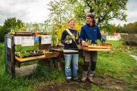 Das Frei-Hof Team Sigrid Drage und Andreas Voglgruber freut sich über ihre vielfältige Bio-Jungpflanzen Anzucht.