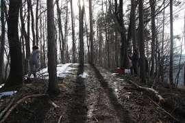 Hinter den Kulissen: Ella Sattler läuft durch den Wald einen Hügel hinauf