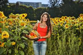 Frau zwischen Sonnenblumen mit einem frisch geernteten Korb Gemüse