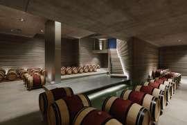 Der neue Weinkeller von Masseto