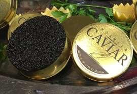 Nahaufnahme einer offenen Dose Mörwald Kaviar