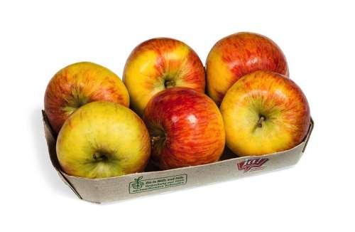 Ja! Natürlich Bio-Äpfel auf Graspapiertasse