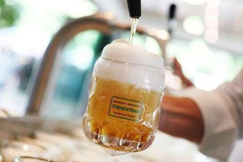 Ein Krügerl Budweiser wird gezapft - Original Budweiser Budvar gibt es ausschließlich im Schweizerhaus