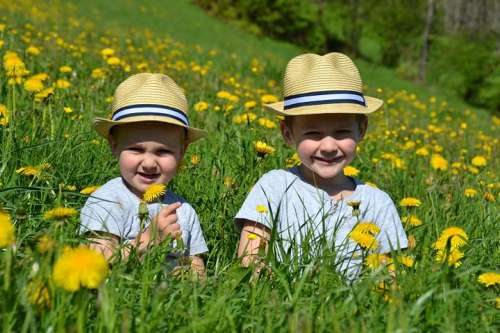 Alexander und Maximilian genießen den Sommer im Zillertal in einer Bergwiese voller Löwenzahn