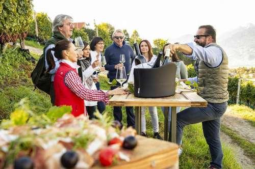 Weindegustation im Weinberg mit einem Genusspiknick