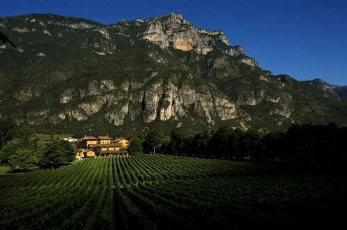 Das Weingut vor eindrucksvoller Bergkulisse