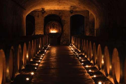 Barriquefässer im Weinkeller der Tenuta Di Ghizzano
