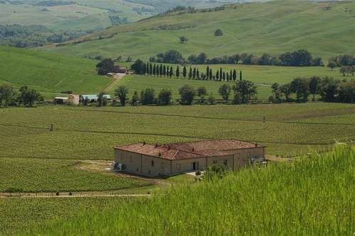 inmitten von Grünland und Weingärten liegt das Weingut