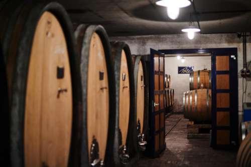 Ein Blick in den Keller des Weingutes Polz